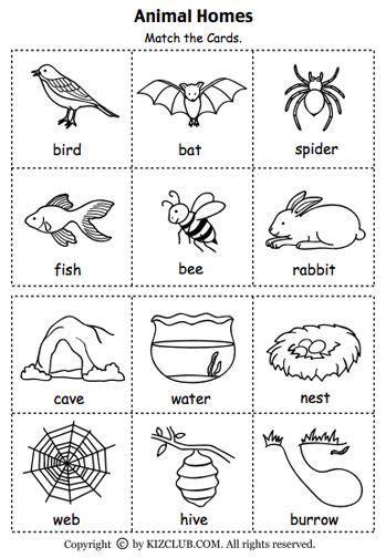 animal printable exercises animal homes match the cards english pinterest