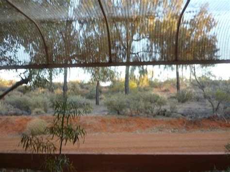 Jardins Picture Of Desert Gardens Hotel Ayers Rock Ayers Rock Desert Gardens Hotel