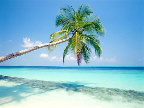 maldives images maldives hd wallpaper and background