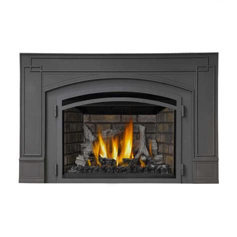 Napolean Fireplace Inserts by Napoleon Ir3 Infrared Series Gas Fireplace Insert