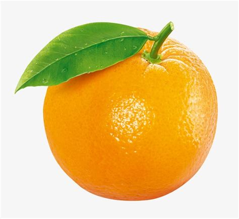 orange clipart orange fruit png vector psd and clipart with