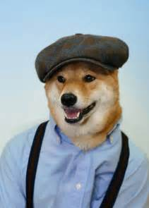 dogs in clothes bodhi the menswear models real mens clothes for major fashion brands metro news