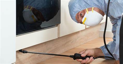 bed bug fumigation specialists  mesa az