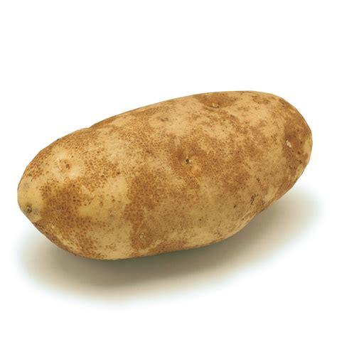 what is potato russet potatoes ingredient finecooking