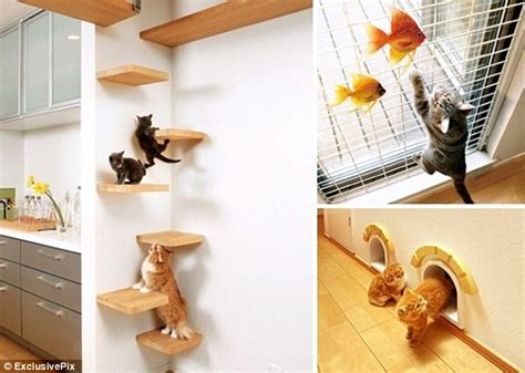 design works home is where the cat is does it come fully fur nished dream home designed