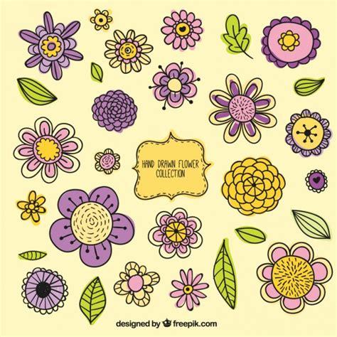 fiori varietà variet 224 di fiori disegnati a mano d epoca insieme