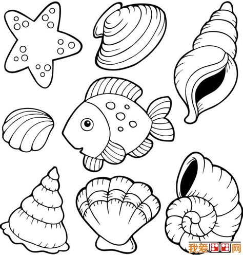 free shells starfish coloring pages