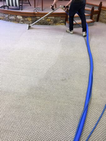 professional rug cleaning cost professional carpet cleaning cost edinburgh carpet menzilperde net