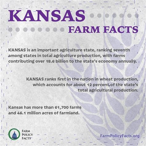 crop insurance important for ag industry washington ag 17 best images about friday ag facts on crop insurance dairy and agriculture