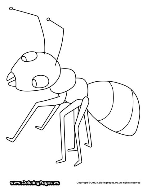 ant coloring pages ant coloring pages to and print for free
