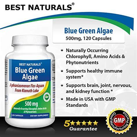 d protein powder for diabetes in usa klamath blue green algae 500 mg 120 capsule health and