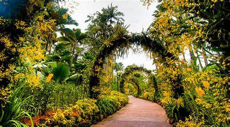 How To Go To Botanic Garden Singapore Botanic Garden Places In Singapore World Top Top