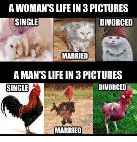 Single Man Meme - a woman s life in 3 pictures single divorced married a man