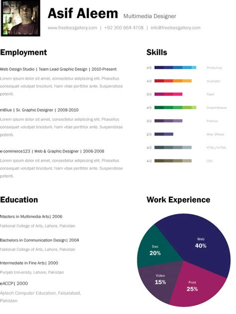 Resume Skills Bar Chart Top 10 Free Resume Templates For Web Designers
