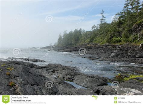 pics of the pacific ocean coast of canada rocky coast royalty free stock images image 31975869