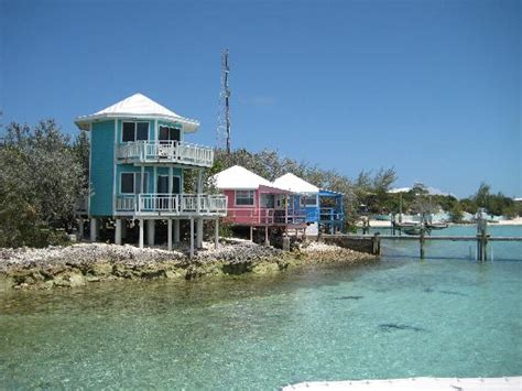 staniel cay yacht club cottages cottages with sharks swimming by