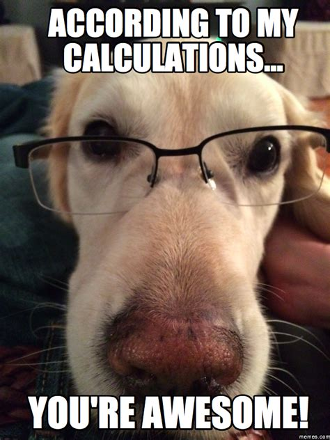 You Re Awesome Meme - according to my calculations you re awesome memes com