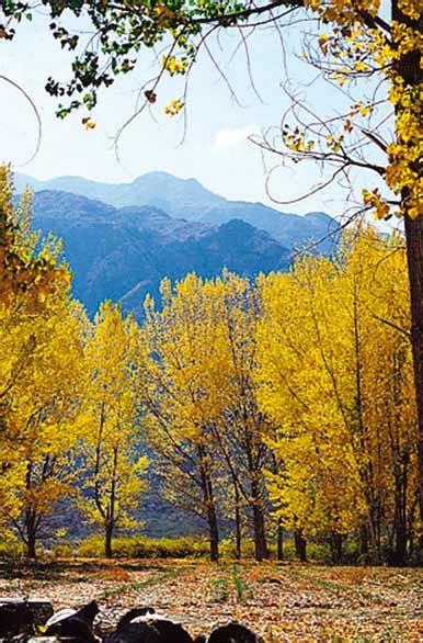 imagenes de otoño en mendoza oto 241 o en potrerillos fotos de mendoza archivo wa 4903