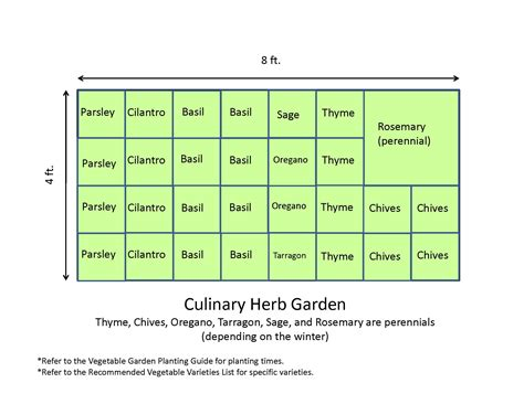 4x8 Culinary Herb Garden Layout Plans Ideas For Small