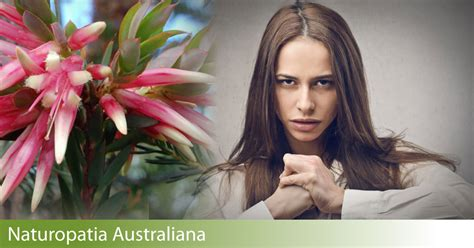credenze limitanti credenze limitanti come superarle con i fiori australiani