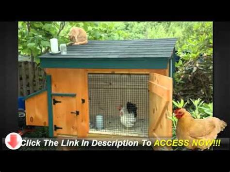 things to build in your backyard build chicken coops for your backyard things to think about youtube