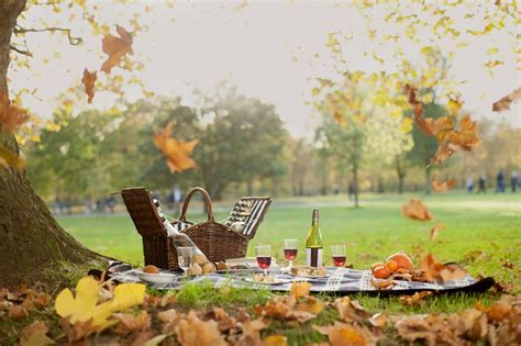Clarence House London by Dukes St James London Offering Bespoke Picnics In The Park