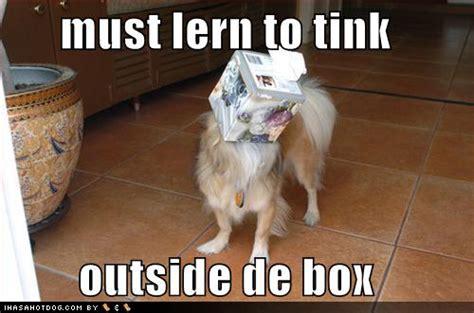 jokes about dogs wallpapers hd wallpapers jokes