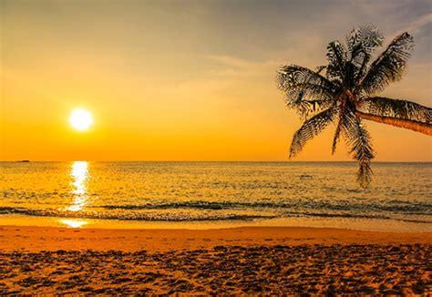 imagenes mamonas en la playa 10 tips para disfrutar la playa al m 225 ximo