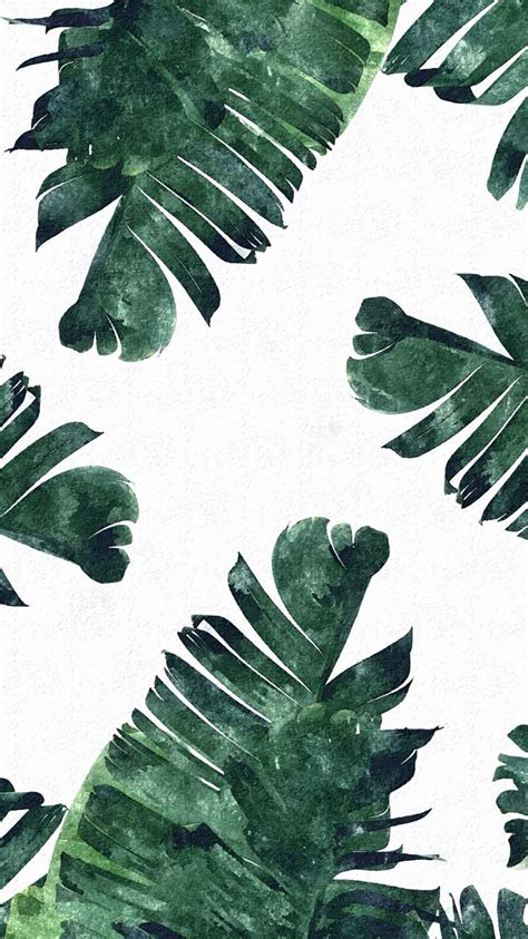 wallpaper for iphone 5 plant tropical leaves iphone wallpaper pinteres