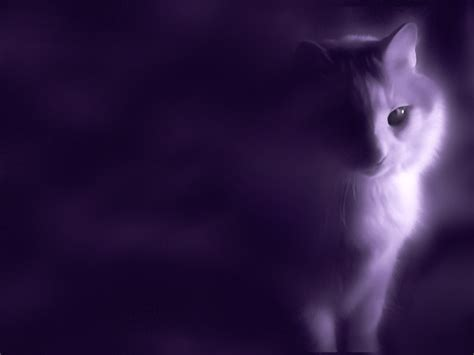 mystical images purple wallpaper boyofbows weblog