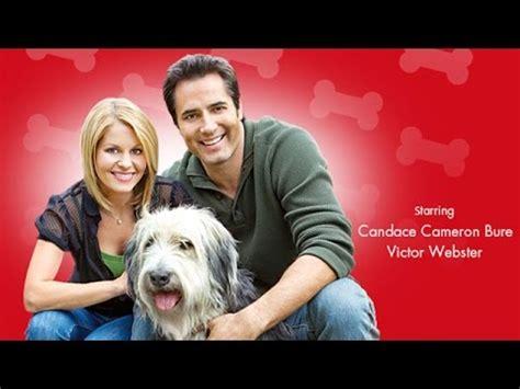 puppy hallmark the starring pascale hutton and kavan smith hallmark channel