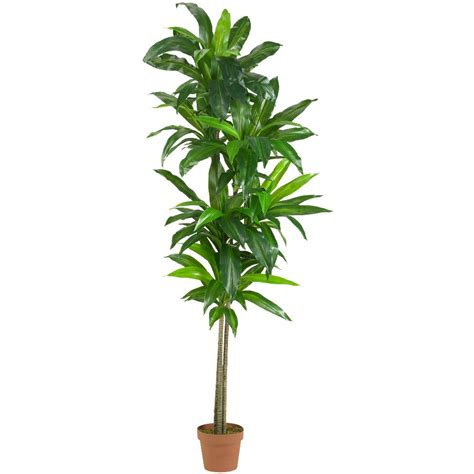 silk plants 6 real touch dracaena silk plant artificial plants
