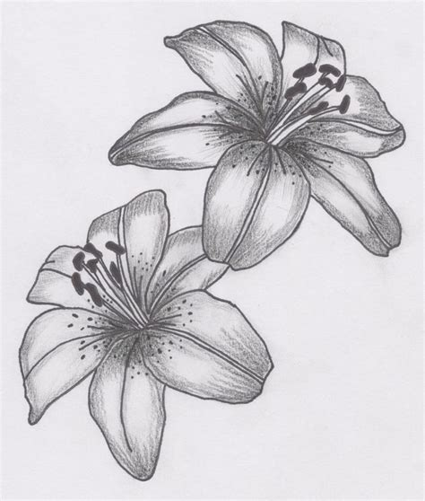 azalea flower tattoo designs best 25 flower tattoos ideas on lilly