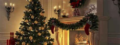 oh tannenbaum wie halte ich meinen weihnachtsbaum