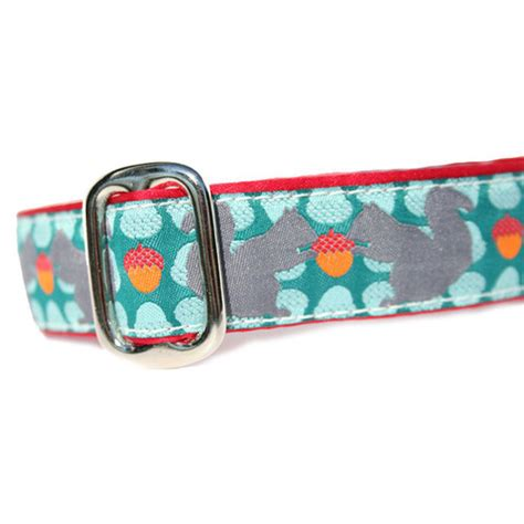 collar with metal clasp squirrel with nut martingale and metal clasp collar 1 quot agatha louise