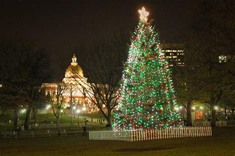 boston common christmas tree 2010 flickr photo sharing