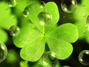 St patrick s day catering menu christopher s kitchen catering nj