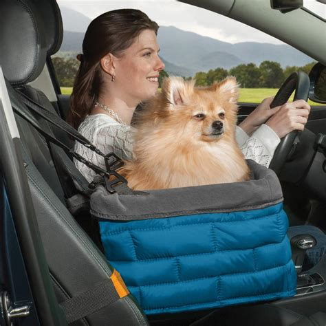 kurgo car seat belt kurgo loft tm booster seat for cars with