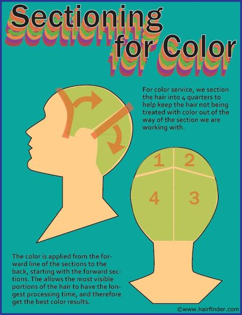 Hair Colour Sectioning Patterns by Hair Sectioning Around Here