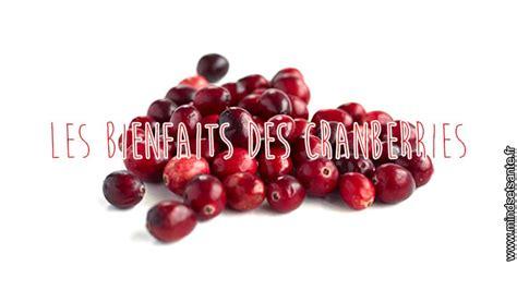 Fitness Barre Cranberry by Cranberries Un Concentr 233 D Antioxydant Mindset Sant 233