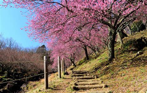 wallpaper pemandangan alam di jepang inilah 12 wallpaper pemandangan alam terindah di jepang hd