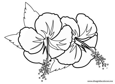 fiori di primavera da stare e colorare disegni di fiori da stare disegno fiore hawaiano da