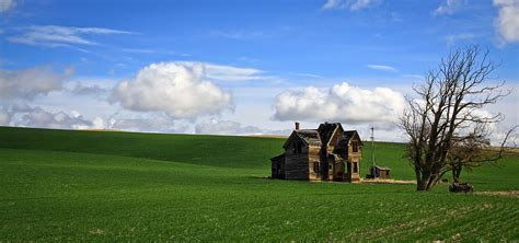 abandoned house on green pasture photograph by steve mckinzie