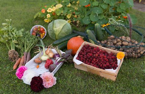 Garden Of Careers Bark Mulch Suppliers Cambridge Monthly Garden