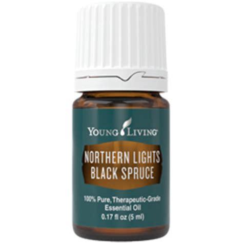 northern lights black spruce essential northern lights black spruce essential buy here