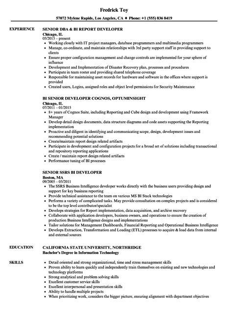 senior developer resume format senior developer bi resume sles velvet