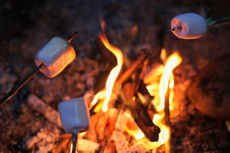 how to a bonfire without a pit safe and scrumptious cfire cookouts for dewitt