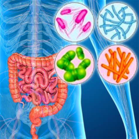 disbiosi intestinale test test disbiosi intestinale dr ssa nicoletta ferraris