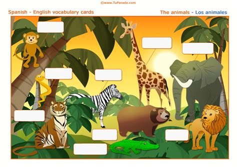 imagenes reales y virtuales vocabulario los animales the animals imprimir para