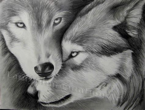wolf wallpaper pinterest pencil sketches of wolves 25 best ideas about wolf